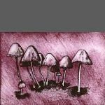 Fungi I (unframed image size: 10cmx14.5cm)