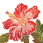 Hibiscus (unframed image size: 10cmx10cm)