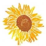 Sunflower (unframed image size: 10cmx10cm)